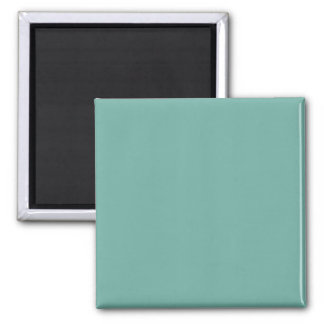 Only pale jade mint green solid color magnet