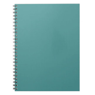 Only Turquoise gorgeous seafoam solid color Notebooks