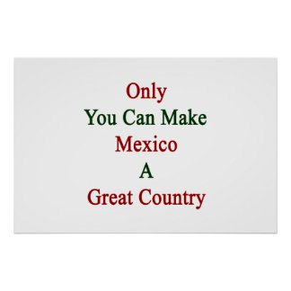 Only You Can Make Mexico A Great Country Poster
