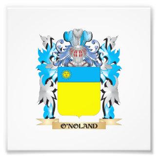O'Noland Coat of Arms - Family Crest Photo