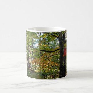 Ontario forest coffee mug