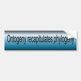 Ontogeny Recapitulate Phylogeny Car Bumper Sticker