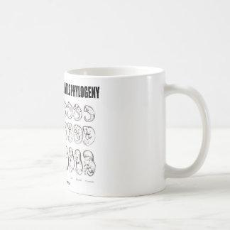 Ontogeny Recapitulates Phylogeny (Biology) Classic White Coffee Mug