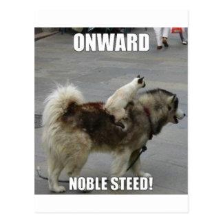onward noble steed postcard