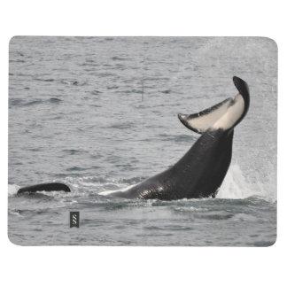 Onyx (L87) Tail Lob Journal