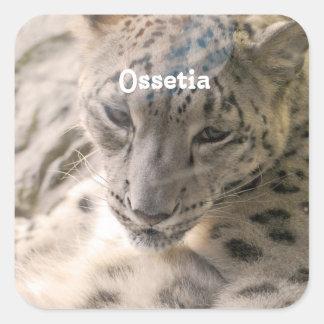 Onza de Ossetia Pegatina Cuadrada
