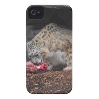 Onza que come su foto colorida de la carne iPhone 4 carcasas