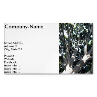 oOld Fig Tree Business Card Magnet