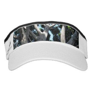 oOld Fig Tree Visor
