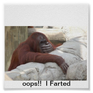 oops!! I Farted Print