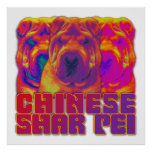 Op Art - Chinese Shar Pei Posters