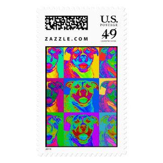 Op Art Pitbull Postage Stamp