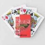 Opabinia Playing Cards