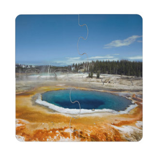 Opal Pool Puzzle Coaster