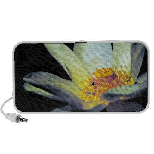 Opalescent Lotus Portable Speakers