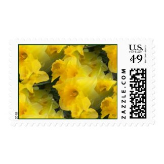 Opaque Flowers Postage
