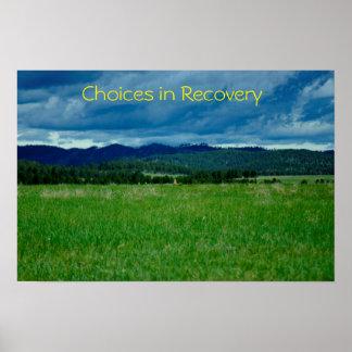 Opciones en poster de la recuperación/III de