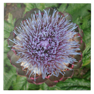 Open Artichoke Flower. Purple. Tile