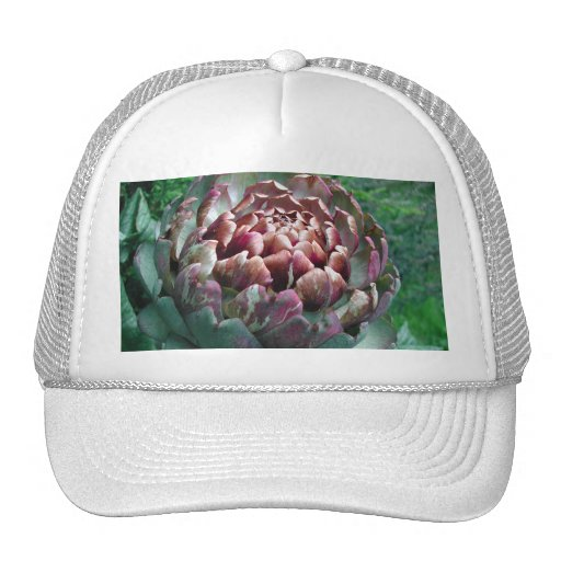 Open Artichoke Plant. Trucker Hats