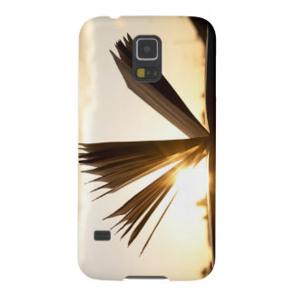 Open Book and Sunset Photograph Case For Galaxy S5