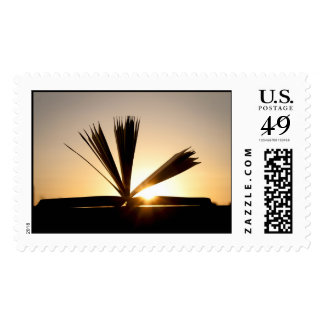Open Book and Sunset Photograph Stamp