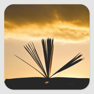 Open Book and Sunset Photograph Square Sticker