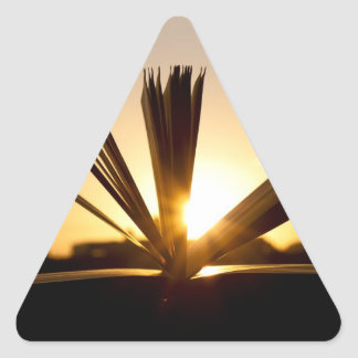Open Book and Sunset Photograph Triangle Sticker