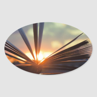 Open Book and Sunset Photography Oval Sticker