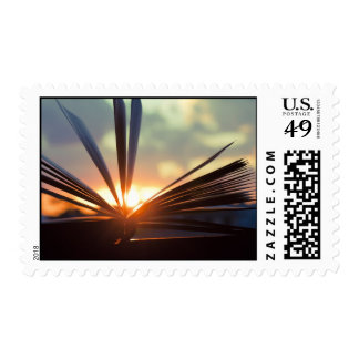 Open Book and Sunset Photography Postage
