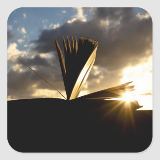 Open Book and Sunset Photography Square Sticker