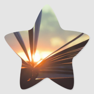Open Book and Sunset Photography Star Sticker