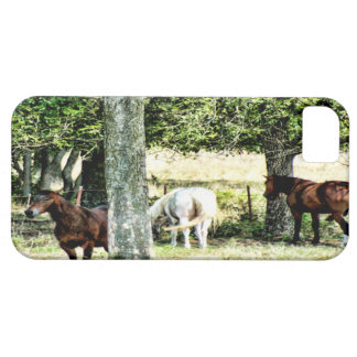 OPEN FIELD iPhone 5/5S COVER