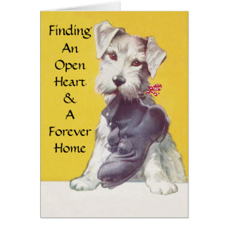 Open Heart & Forever Home Pet Rescue TY Cards