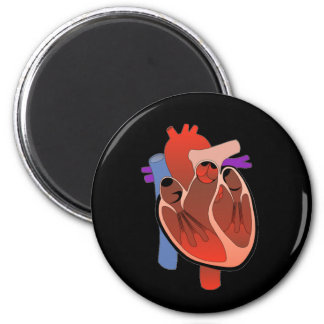 Open Hearted Magnets