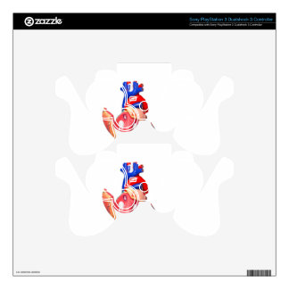 Open model human heart on white background PS3 controller decal