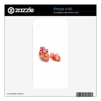 Open model of human heart showing inside.jpg iPhone 4 skin