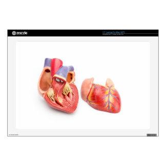 """Open model of human heart showing inside.jpg skin for 17"""" laptop"""