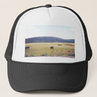 Open Range Hat