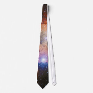 Open Star Cluster NGC 3324 in the Carina Nebula Neck Tie