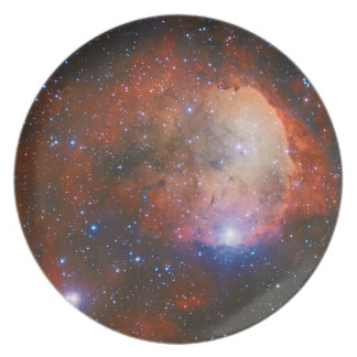Open Star Cluster NGC 3324 in the Carina Nebula Party Plate