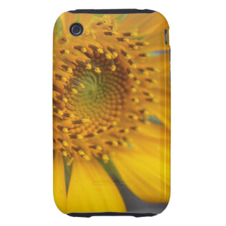 Open Sunflower iPhone 3 Tough Cover