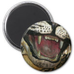 Open tiger mouth grunged image magnets