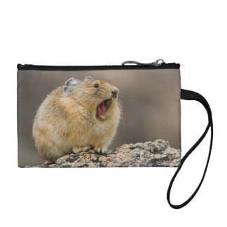 Open Wide Coin Purse