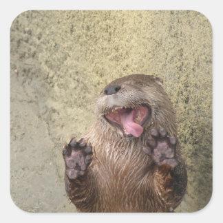 Open Wide! Otter Stickers