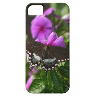 Open Wing Butterfly iPhone SE/5/5s Case