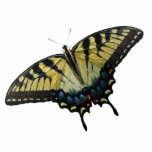 "Open Wings Statuette<br><div class=""desc"">This unique photo sculpture pin features a yellow and black eastern tiger swallowtail butterfly.</div>"