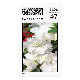 Opened Flowers Postage Stamps