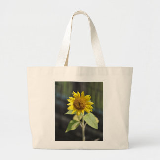 Opened sunflower canvas bags
