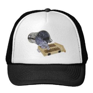 OpenHouseCelebrations060709 Mesh Hat