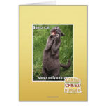 Opera Cat Card